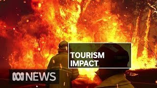 Bushfire crisis having significant impact on NSW tourism industry | ABC News