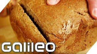 Frisches Brot aus der Kapselmaschine | Galileo Lunch Break