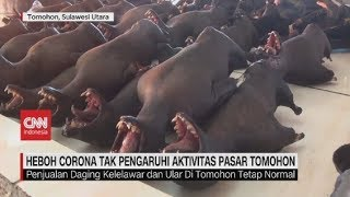 Heboh Corona Tak Pengaruhi Penjualan Daging Kelelawar di Pasar Tomohon