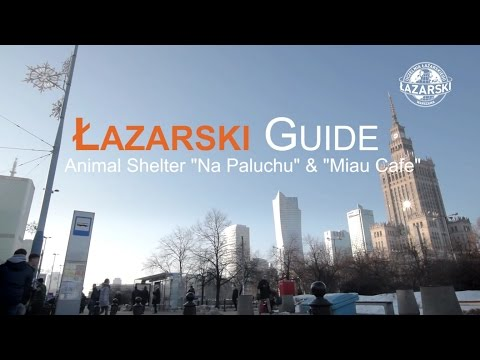 "Warsaw Students Guide 4 -  ""Na Paluchu"" - animal shelter, Miau Cafe"