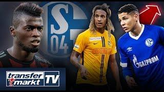 Schalker Transferspekulationen: Gerüchte um Zu- & Abgänge im Check | TRANSFERMARKT