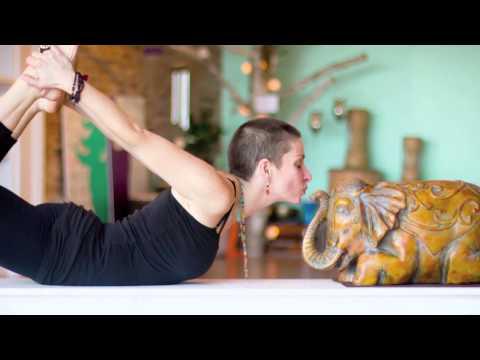 AHIMSA 2015 Promotional Video
