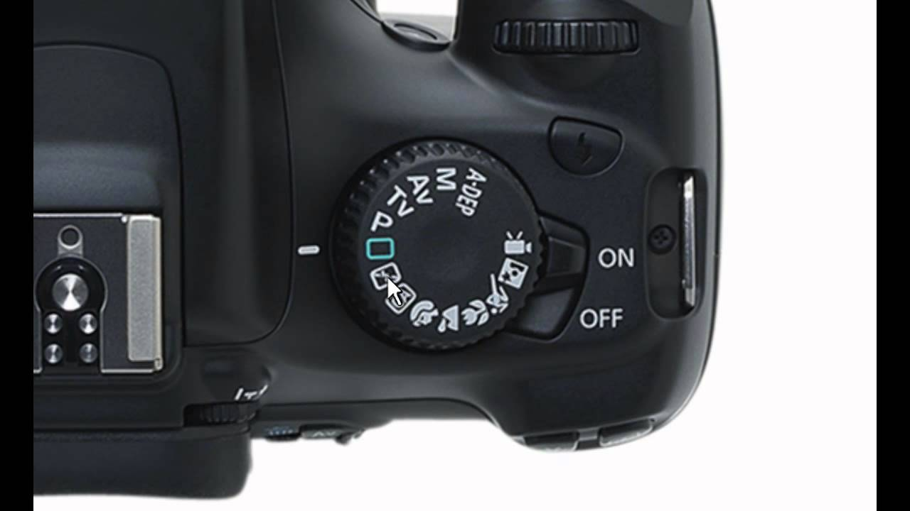 Photography tutorial: a quick guide to understanding your dslr.