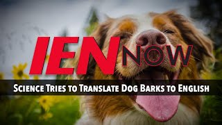 IEN NOW: Science Tries to Translate Dog Barks to English