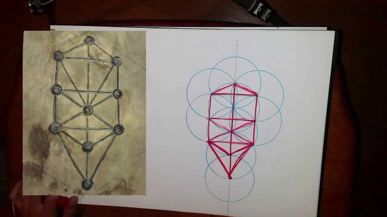 hight resolution of the tree of life sacred geometry how to draw