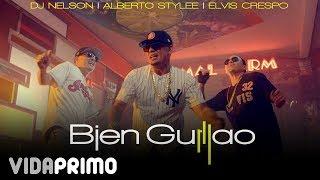 Смотреть клип Dj Nelson X Alberto Stylee X Elvis Crespo - Bien Guillao