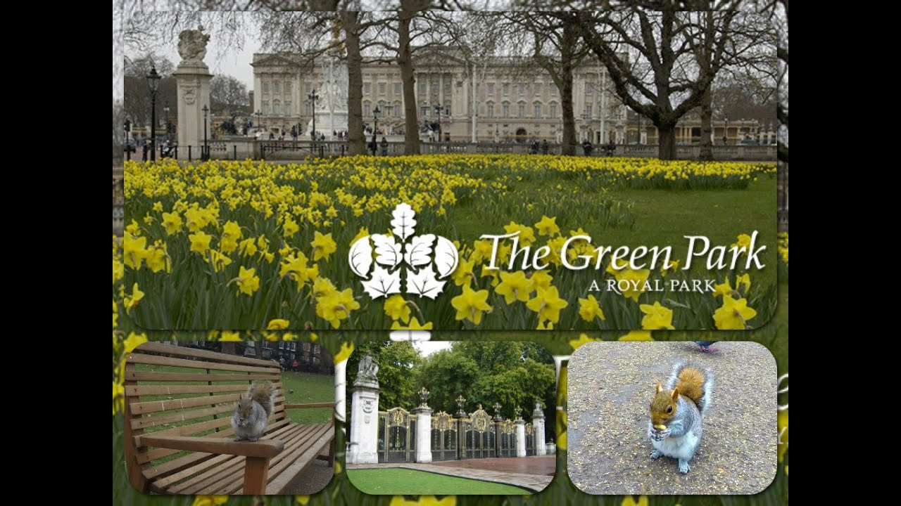 squirrels live the green park london uk youtube. Black Bedroom Furniture Sets. Home Design Ideas