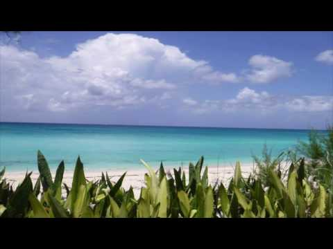 Study Abroad in the Bahamas: An Interview with Peter