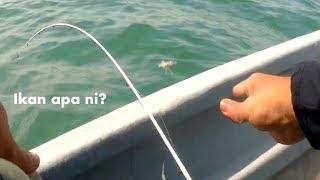 Pancing Port Dickson: Kerapu, siakap, bayan, mentimun, dengkis