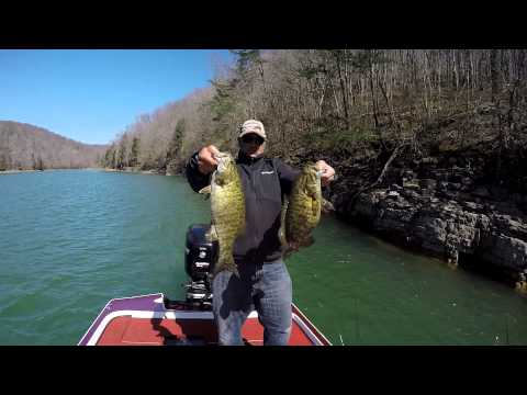 EastTNFishing: Norris Lake Studs - Spring 2015 -