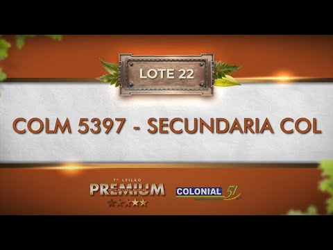 LOTE 22   COLM 5397