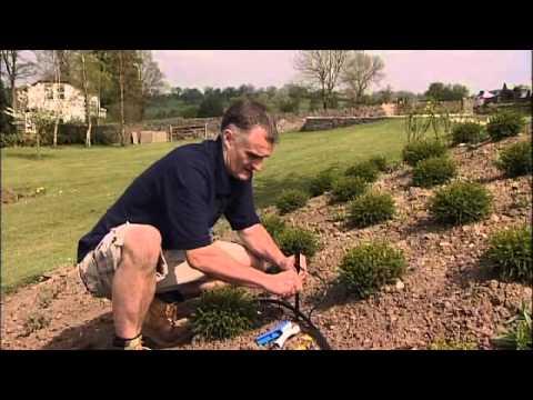 sprinklers how to install a garden sprinkler system youtube