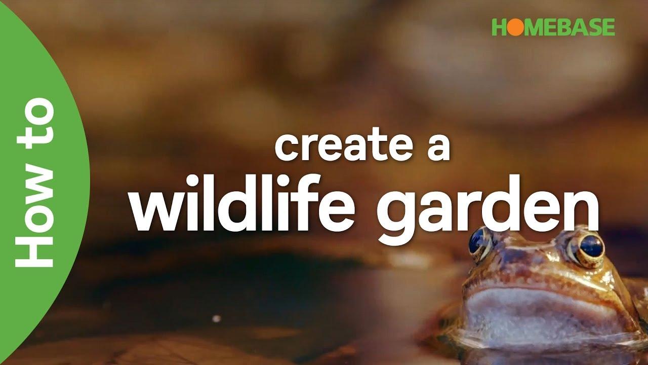 How to create a wildlife garden with Ann-Marie Powell   Garden Goals ...