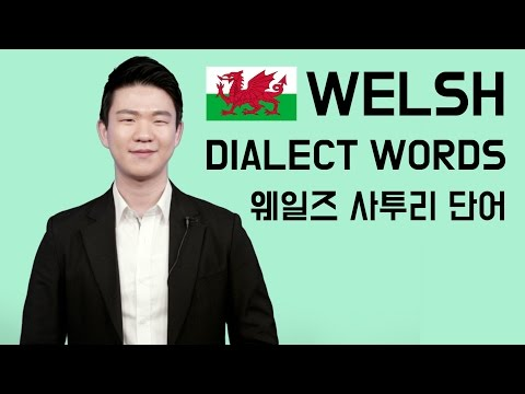Welsh Dialect Words [Korean Billy]