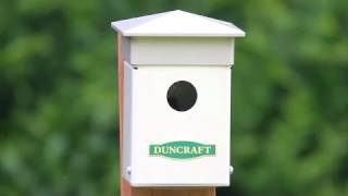 Duncraft's Fence Post Bird House #4259.flv