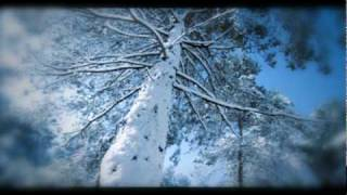 NARSILION - Winter Elven Dream