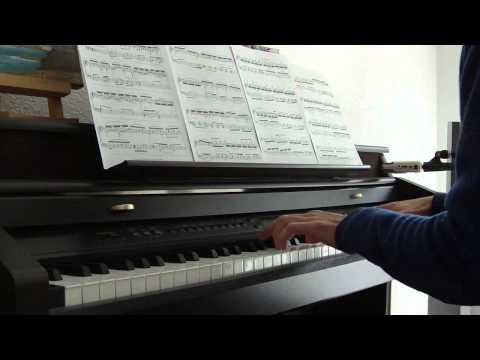 Michael Nyman La leçon de piano (piano solo) poster