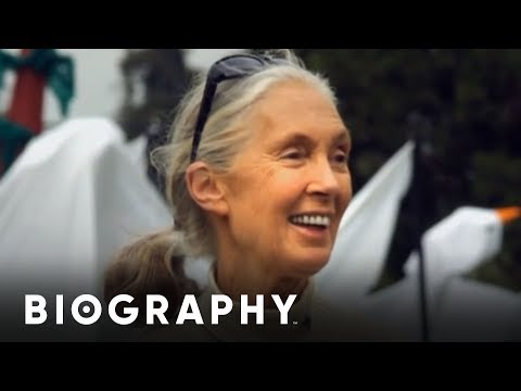 Jane Goodall - Animal Rights Activist | Mini Bio | BIO