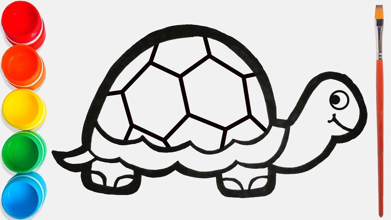 Belajar Hewan Liar Untuk Anak Anak Menggambar Dan Mewarnai Mainan Kura Kura Pelangi Untuk Anak Anak
