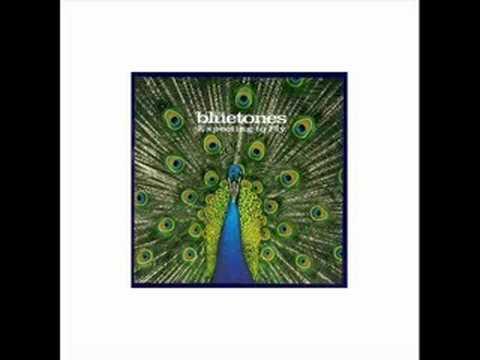 A Parting Gesture - The Bluetones mp3