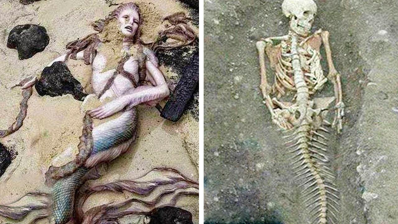 то, фото русалок в реальной жизни как пойму