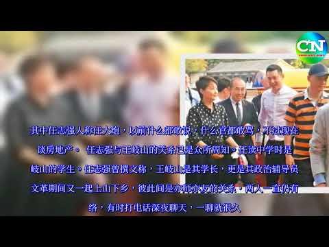 """任志强袁立潘石屹""""红船密会""""疑撑崔永元 - 中国禁闻网"""