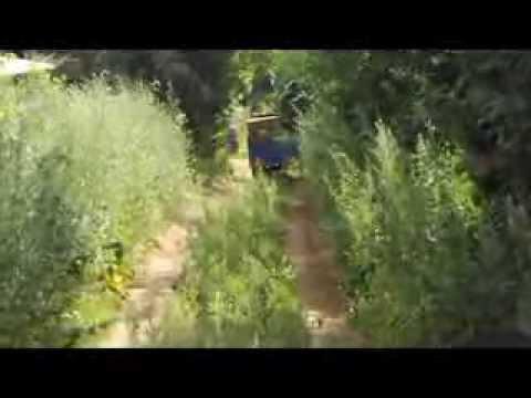 Трицикл грузовой LIFAN AGIAX