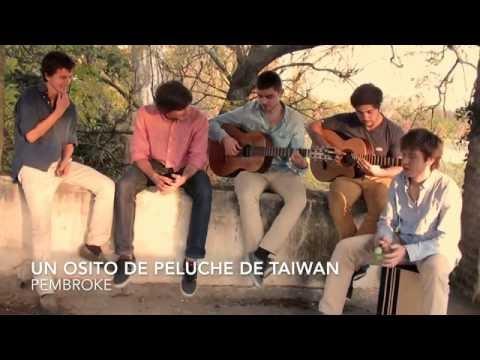 Osito de Peluche de Taiwan - Pembroke (Cover Los Autenticos Decadentes)