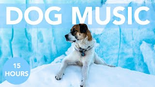 DOG MUSIC! Soothing ASMR to Help Your Dog Sleep! No More Anxiety!