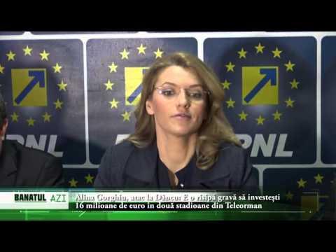 Alina Gorghiu, Atac La Dâncu: E O Risipă Gravă Să Investești 16 Milioane De Euro în Două Stadioane D