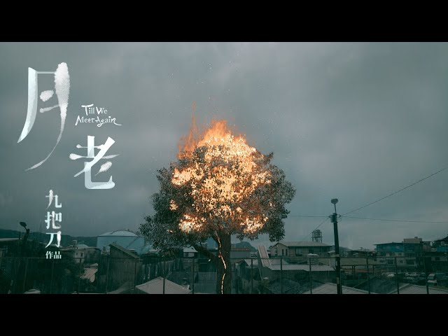電影《月老》官方前導預告|Till  We Meet Again Official Teaser Trailer|2021年暑假