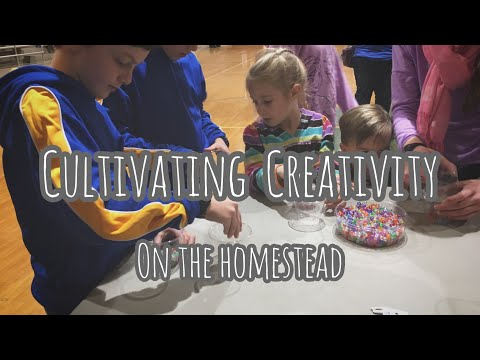 Cultivating Creativity on the Homestead | The REAL PURPOSE of all the Stuff
