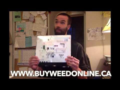 Cannabis Culture | Marijuana Magazine