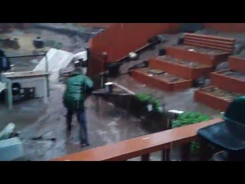 Rain Damage El Cajon Ca El Nino