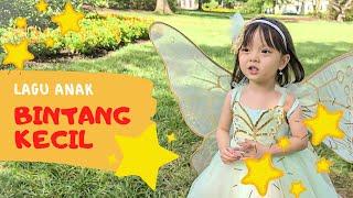 BINTANG KECIL DI LANGIT YANG BIRU | LAGU ANAK INDONESIA