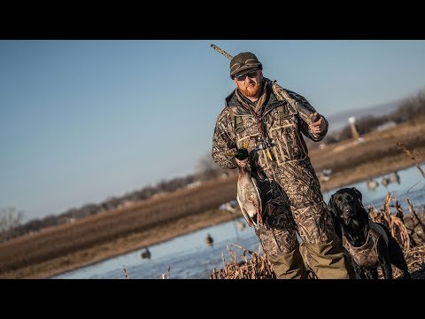 Duck Hunting Dogs: