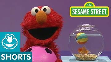 Sesame Street: Play Ball! | Elmo