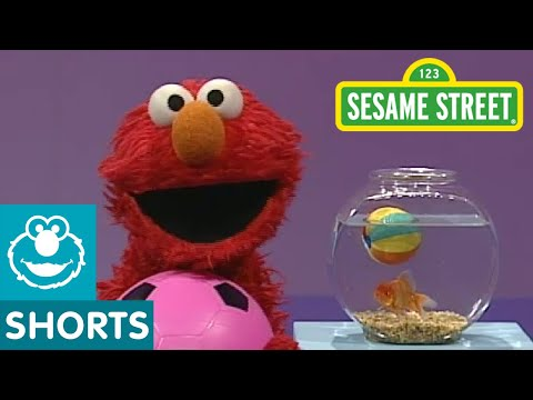 Sesame Street: Elmos World: Play Ball!