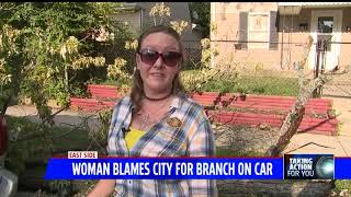 Indy woman blames city for branch that totaled her van