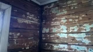 Ободрали стены до бревна и что там обнаружили! Начали ремонт дома.