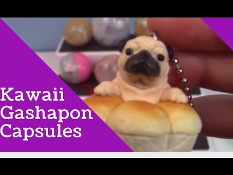 1d2bab36ef8 Cute Gashapon! 🍰 Kawaii Toys from Japan! Opening a massive lot. LOOK AT  THE PUG!