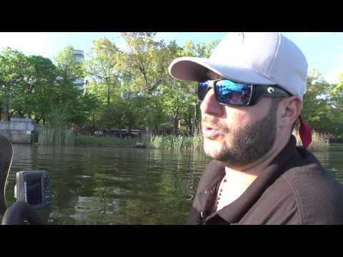 Bass Fishing on the Lower Charles River
