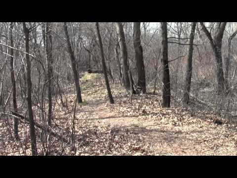 Neponset River Greenway Canton MA Fowl Meadow Part 6