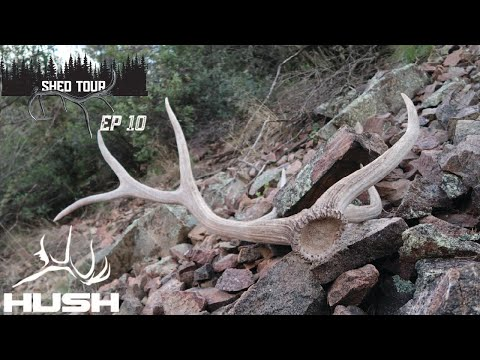BACK PACK FULL OF ELK SHEDS! | SHED TOUR EP10