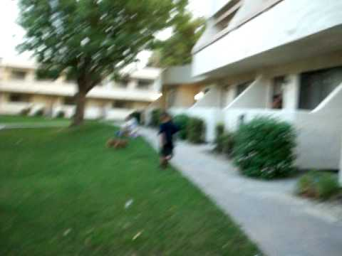 Ashton gets chased by a dog. Funny!
