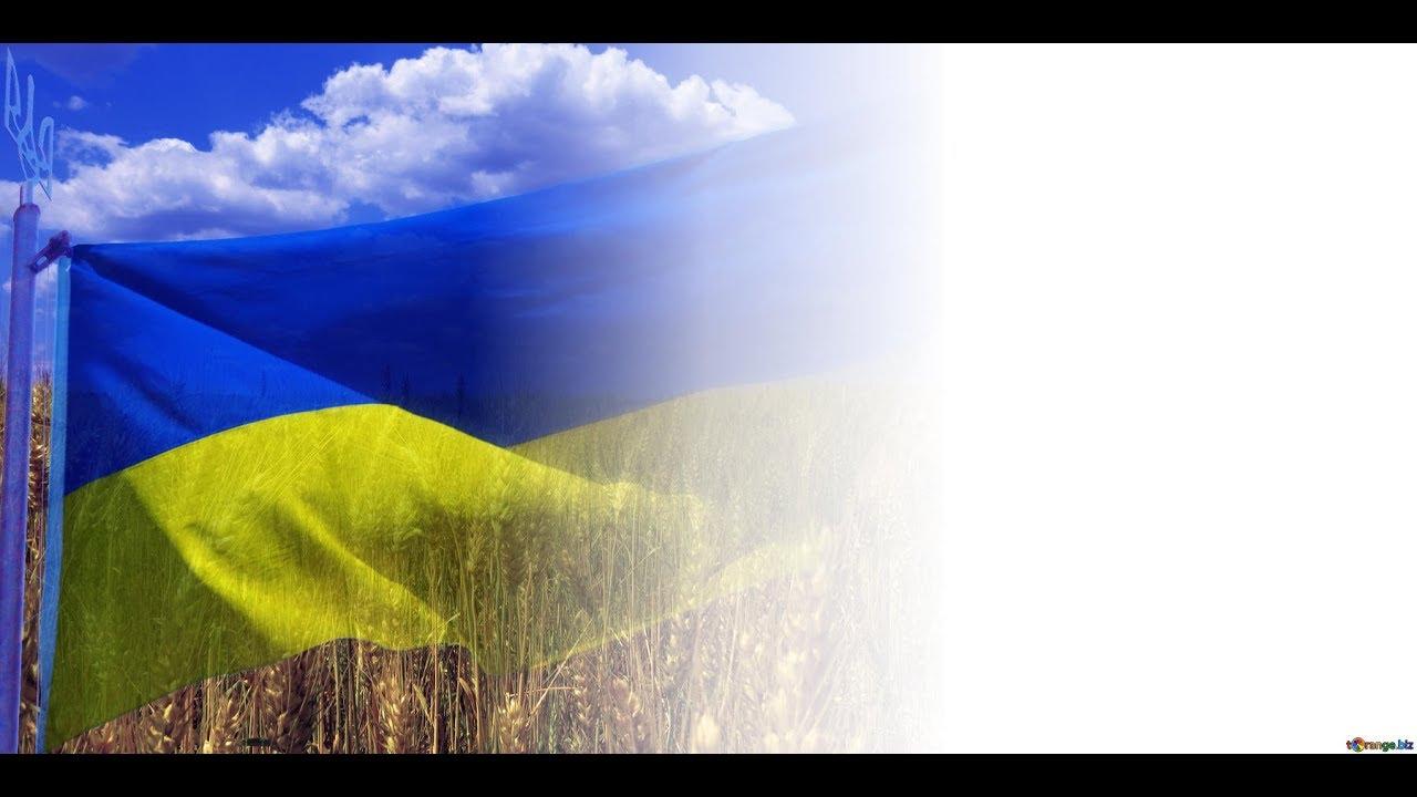 лес сделать фото на фоне флага украины губы кто-то считает
