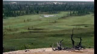 Природные сказки России Тундра