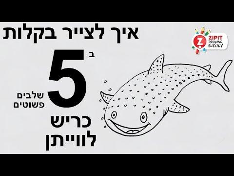 איך לצייר כריש לווייתן