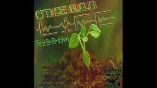 New Life Riddim (Full mix Nov 2014)(Ishabingi Music) mix by Dj Ombreh Zion