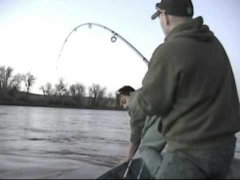 River Monster-on the Missouri River